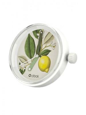 O clock .botanique